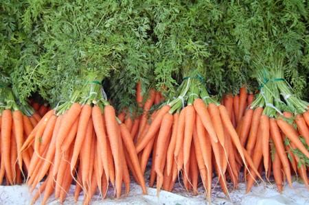 A cenoura é o alimento da vez imagem